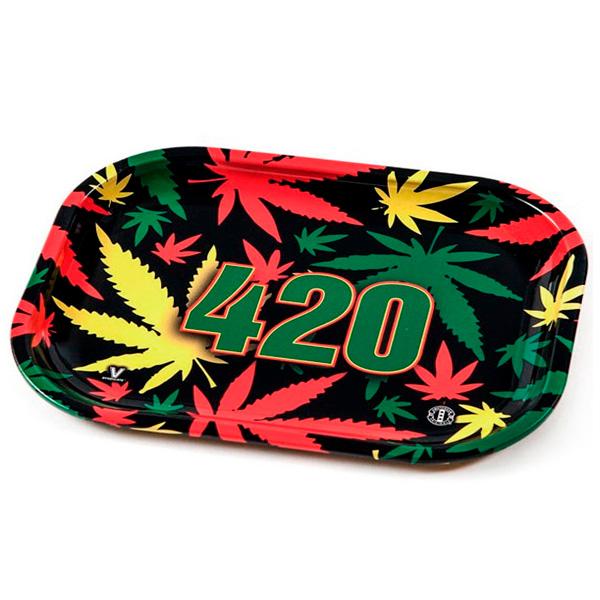 AMNESIA (3+1) AS