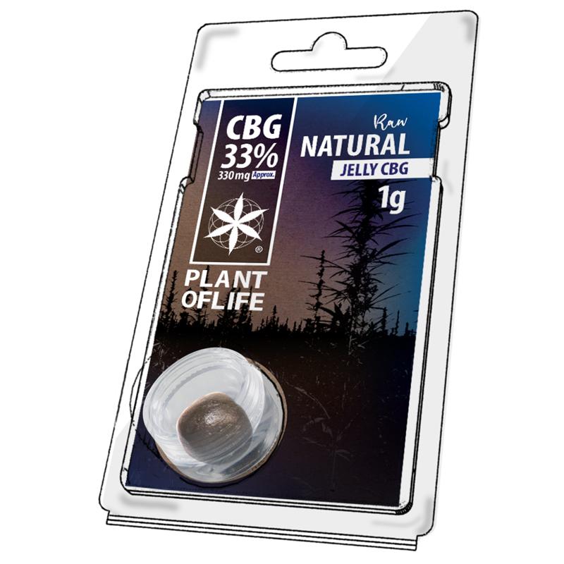 AUTO AFGHAN SKUNK (10+3) AS